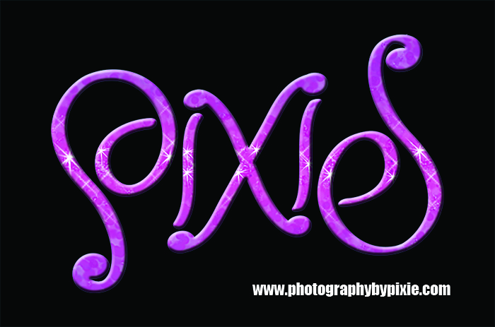 ambigram logo design pixie
